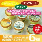お中元 御中元 アイス ice アイスクリーム ギフト gift 送料無料 東毛酪農アイスクリーム6個セット 冷凍便