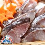 ギフト 産地直送 KMJ 高級魚 魚介 ギフト gift 送料無料 伊勢神宮奉納魚マハタ切身 約35g×4切 HM91013