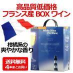 送料無料 テール エ ソレイユ ブラン 3000ml(3L)×1ケース/4本 フランスボックスBOXワイン(004)