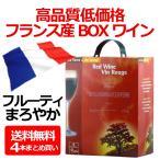 送料無料 テール エ ソレイユ ルージュ 3000ml(3L)×1ケース/4本 フランスボックスBOXワイン(004)