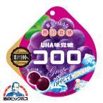 グミ キャンディ お菓子 UHA味覚糖 コロロ グレープ 48g×1個