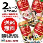 2016 / 12 / 6限定発売 送料無料 キリン 午後の紅茶 アップルティーソーダ 500ml×2ケース / 48本(048)
