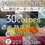 カーテン 遮光 オーダーカーテン 防炎 安い おしゃれ ラ・パレット 巾50-100cm 丈201-250cm