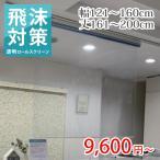 ロールスクリーン ロールカーテン オーダー 透明 幅91〜150cm×丈81〜160cm