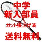 ソフトテニスラケット 新入部員向き ミズノ テクニクス200(レッド)中学生 63JTN775