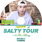 K-POP DVD/BIGBANG VI SALTY TOUR #1 (2018.08.11)★日本語字幕あり/BIGBANG ビッグバン V.I Seung Ri スンリ KPOP DVD/