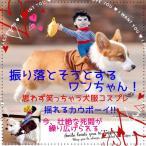 犬 服 犬服 秋用 冬用 おもしろ コスプレ セール 安い カウボーイ キャラクター ロデオ コスチューム ハロ
