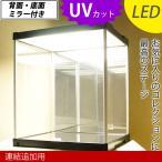 (連結追加用) UVカット コレクションケース J-STAGE