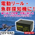 【厳選】魚影探知機・電動リール・船舶用補助電源 バッテリー WP12-12 12V12Ah 90日保証付 スノーモービル Smart-UPS バイクパーツセンター