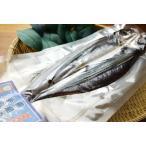 飛び魚の手塩干し(30cm〜40cm)(真空パック)