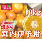 柑橘 - 訳あり宮内伊予柑 約10kg 2L-Lサイズ(36-42玉前後) 愛媛県産