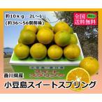 ショッピング皮 小豆島スイートスプリング 約10kg2L-L(36-42個入り) 香川県産