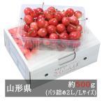 (6月中旬頃よりお届け)佐藤錦 バラ詰めLサイズ500g 山形県産
