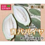 青パパイヤ 約5kg8玉入り 香川県産