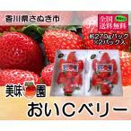 美味いちご園 おいCベリー 大粒約270gパック×2パック 香川県産