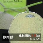 マスクメロン 約1.5kg前後 1玉入り 静岡県産