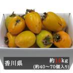 干し柿用あたご柿(渋柿) 約13kg 約40-70個入 香川県産