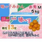 味っ子みかん 赤M・5kg 長崎県産