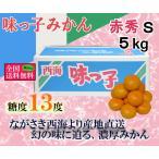 味っ子みかん 赤秀S 約5kg 長崎県産