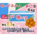 味っ子みかん 赤○S 約5kg 長崎県産
