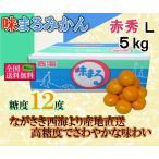 味まるみかん 赤秀L 約5kg 長崎県産