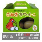 奇异果 - さぬきキウイっこ 2箱入り(1箱7-15玉程度) 香川県産