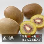 Kiwi - さぬきエンジェルスイート(Aランク) S28玉入り 香川県産