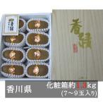 香緑キウイ(スイート16)7L−4L 6−9玉入り 香川県産