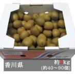 小豆島さぬきキウイっこ 約2kg入り 香川県産