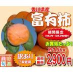 訳あり富有柿 約7.5kg 香川県産