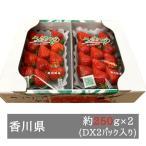 さぬきひめいちごDX 約270g×2パック入り 香川県産