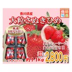 大粒さぬきひめいちご 約1.1kg 香川県産