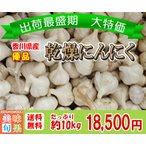 (訳あり)優品乾燥にんにく 約10kg 香川県産