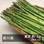 (6月上旬以降発送)アスパラガス さぬきのめざめ夏芽(約30cm)Mサイズ 約5kg 香川県産