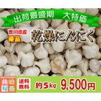 (訳あり)優品乾燥にんにく 約5kg 香川県産