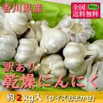 (6月中旬頃より順次発送)訳あり乾燥にんにく 約2kg(サイズおまかせ) 香川県産