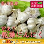 訳あり乾燥にんにく 約10kg(サイズおまかせ) 香川県産