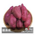 新物鳴門金時 M/Lサイズ 約5kg 徳島県産