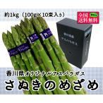 香川県オリジナルアスパラガス さぬきのめざめ 約1kg(100g×10束入り)
