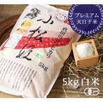 有機JAS認証 コシヒカリ小松姫 プレミアム 白米(金井農園の有機米 無農薬・無化学肥料)[5kg] 群馬産《常温・産地直送便》