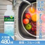 野菜洗い洗剤 フルーツ 果物洗い洗剤 ピーリングウォッシュ 480ml 天然成分 手にやさしい 農薬落とし