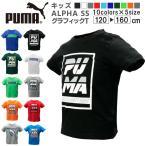 プーマ キッズ トップス PUMA 843945 ALPHA SS グラフィック 半袖 Tシャツ  | 男の子 女の子 ボーイズ ガールズ 学校 幼児 小学生 クラブ サッカー アウトドア