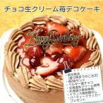 チョコレート生ケーキ苺7号/ポストカード無料/パーティークラッカープレゼント/お誕生日ケーキに・・・