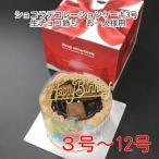 5号/仮面ライダーゴースト/紙風船プレゼント/ポストカード無料/キャラデコケーキ バースデーケーキ オリジナルケーキ予約翌日OK