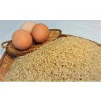 【あきたこまち】A5kg「玄米」と卵2ケース(12個入)セット【令和元年産】【秋田県産】「鶏卵」