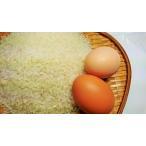 【あきたこまち】医者いらず米A5kg「白米」と卵4ケース(24個入)のセット【秋田県産】【令和2年産】【送料無料】
