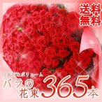"""バラ花束365本 花言葉は""""毎日君が恋しい"""""""
