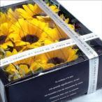 フラワーボックス 生花 アレンジメント ヒマワリ (イエロー系) ギフト お祝い ギフト