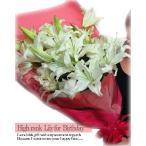 ユリの花束 10本 1本3〜4輪つきのゆり 百合の花束 お祝いまたはお供えから用途を選べる ギフト プレゼント