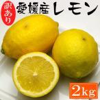 訳あり・愛媛産レモン2kg 約13〜18玉「安心・安全がうれしい国産レモン!」送料無料